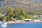 GriechenlandWeb.de Marathonas Aegina | Griechenland | Foto 1 - Foto GriechenlandWeb.de
