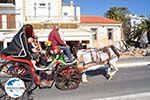 GriechenlandWeb.de Aegina Stadt | Griechenland | GriechenlandWeb.de foto 28 - Foto GriechenlandWeb.de