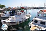 GriechenlandWeb.de Aegina Stadt | Griechenland | GriechenlandWeb.de foto 29 - Foto GriechenlandWeb.de