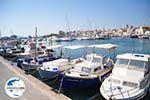 Aegina Stadt | Griechenland | GriechenlandWeb.de foto 47 - Foto GriechenlandWeb.de