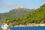 GriechenlandWeb.de Alonissos Stadt (Chora) | Sporaden | GriechenlandWeb.de foto 4 - Foto GriechenlandWeb.de