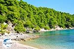 Milia Alonissos | Sporaden | GriechenlandWeb.de foto 1 - Foto GriechenlandWeb.de