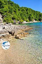 Milia Alonissos | Sporaden | GriechenlandWeb.de foto 4 - Foto GriechenlandWeb.de