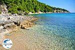 GriechenlandWeb.de Milia Alonissos | Sporaden | GriechenlandWeb.de foto 5 - Foto GriechenlandWeb.de