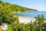 GriechenlandWeb.de Milia Alonissos | Sporaden | GriechenlandWeb.de foto 16 - Foto GriechenlandWeb.de