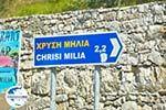 GriechenlandWeb.de Chrisi Milia | Alonissos Sporaden | GriechenlandWeb.de foto 1 - Foto GriechenlandWeb.de