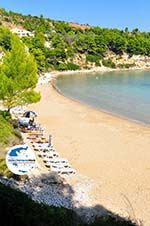 GriechenlandWeb.de Chrisi Milia | Alonissos Sporaden | GriechenlandWeb.de foto 9 - Foto GriechenlandWeb.de