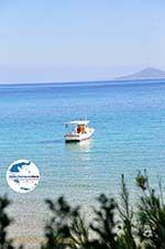 GriechenlandWeb.de Chrisi Milia | Alonissos Sporaden | GriechenlandWeb.de foto 14 - Foto GriechenlandWeb.de