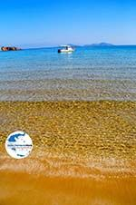 GriechenlandWeb.de Chrisi Milia | Alonissos Sporaden | GriechenlandWeb.de foto 20 - Foto GriechenlandWeb.de