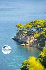 GriechenlandWeb.de Oostkust Alonissos | Sporaden | GriechenlandWeb.de foto 7 - Foto GriechenlandWeb.de