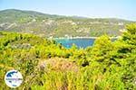 GriechenlandWeb Tzortzi | Alonissos Sporaden | GriechenlandWeb.de foto 1 - Foto GriechenlandWeb.de