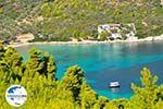 GriechenlandWeb.de Tzortzi | Alonissos Sporaden | GriechenlandWeb.de foto 2 - Foto GriechenlandWeb.de