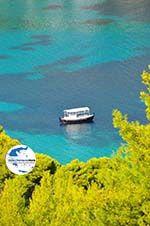 Tzortzi | Alonissos Sporaden | GriechenlandWeb.de foto 3 - Foto GriechenlandWeb.de