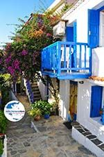 GriechenlandWeb.de Alonissos Stadt (Chora) | Sporaden | GriechenlandWeb.de foto 6 - Foto GriechenlandWeb.de