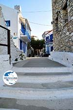 GriechenlandWeb.de Alonissos Stadt (Chora) | Sporaden | GriechenlandWeb.de foto 18 - Foto GriechenlandWeb.de
