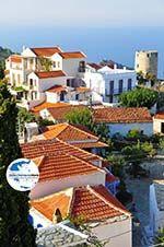 GriechenlandWeb.de Alonissos Stadt (Chora) | Sporaden | GriechenlandWeb.de foto 22 - Foto GriechenlandWeb.de