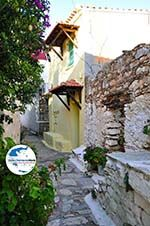 GriechenlandWeb.de Alonissos Stadt (Chora) | Sporaden | GriechenlandWeb.de foto 33 - Foto GriechenlandWeb.de
