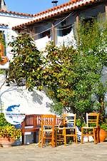 GriechenlandWeb.de Alonissos Stadt (Chora) | Sporaden | GriechenlandWeb.de foto 51 - Foto GriechenlandWeb.de