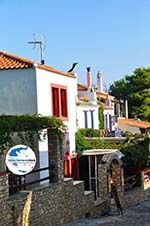 GriechenlandWeb.de Alonissos Stadt (Chora) | Sporaden | GriechenlandWeb.de foto 52 - Foto GriechenlandWeb.de