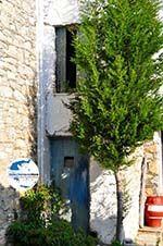 GriechenlandWeb.de Alonissos Stadt (Chora)   Sporaden   GriechenlandWeb.de foto 62 - Foto GriechenlandWeb.de