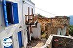 GriechenlandWeb Alonissos Stadt (Chora)   Sporaden   GriechenlandWeb.de foto 67 - Foto GriechenlandWeb.de