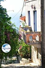 GriechenlandWeb Alonissos Stadt (Chora) | Sporaden | GriechenlandWeb.de foto 79 - Foto GriechenlandWeb.de