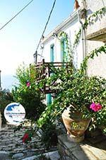 GriechenlandWeb.de Alonissos Stadt (Chora) | Sporaden | GriechenlandWeb.de foto 81 - Foto GriechenlandWeb.de