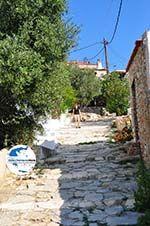 Alonissos Stadt (Chora)   Sporaden   GriechenlandWeb.de foto 87 - Foto GriechenlandWeb.de