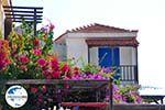 GriechenlandWeb.de Alonissos Stadt (Chora) | Sporaden | GriechenlandWeb.de foto 89 - Foto GriechenlandWeb.de