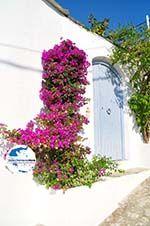 GriechenlandWeb.de Alonissos Stadt (Chora) | Sporaden | GriechenlandWeb.de foto 90 - Foto GriechenlandWeb.de