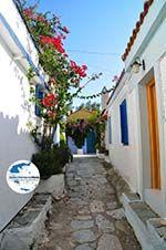 GriechenlandWeb.de Alonissos Stadt (Chora) | Sporaden | GriechenlandWeb.de foto 94 - Foto GriechenlandWeb.de