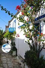 Alonissos Stadt (Chora)   Sporaden   GriechenlandWeb.de foto 96 - Foto GriechenlandWeb.de