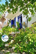 GriechenlandWeb.de Alonissos Stadt (Chora) | Sporaden | GriechenlandWeb.de foto 98 - Foto GriechenlandWeb.de