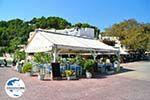 GriechenlandWeb.de Patitiri | Alonissos Sporaden | GriechenlandWeb.de foto 26 - Foto GriechenlandWeb.de