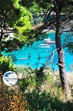 GriechenlandWeb.de Votsi | Alonissos Sporaden | GriechenlandWeb.de foto 4 - Foto GriechenlandWeb.de