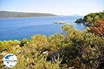 GriechenlandWeb.de Agios Petros Steni Vala | Alonissos Sporaden | GriechenlandWeb.de foto 12 - Foto GriechenlandWeb.de