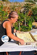 GriechenlandWeb.de Steni Vala | Alonissos Sporaden | GriechenlandWeb.de foto 32 - Foto GriechenlandWeb.de