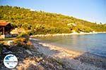 GriechenlandWeb.de Tzortzi | Alonissos Sporaden | GriechenlandWeb.de foto 4 - Foto GriechenlandWeb.de