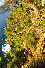 GriechenlandWeb.de Agioi Anargiri klooster | Alonissos Sporaden | GriechenlandWeb.de foto 4 - Foto GriechenlandWeb.de