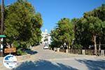 GriechenlandWeb.de Rachidi Katapola Amorgos - Insel Amorgos - Kykladen foto 38 - Foto GriechenlandWeb.de