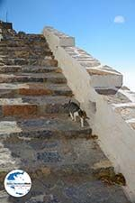 GriechenlandWeb.de Chozoviotissa Amorgos - Insel Amorgos - Kykladen foto 81 - Foto GriechenlandWeb.de