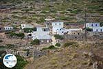 GriechenlandWeb Vroutsi Amorgos - Insel Amorgos - Kykladen foto 152 - Foto GriechenlandWeb.de