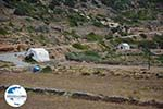 GriechenlandWeb.de Arkesini Amorgos - Insel Amorgos - Kykladen foto 198 - Foto GriechenlandWeb.de