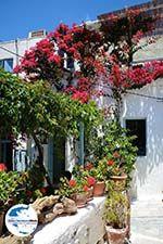 GriechenlandWeb.de Amorgos Stadt (Chora) - Insel Amorgos - Kykladen foto 215 - Foto GriechenlandWeb.de