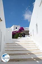 GriechenlandWeb.de Tholaria Amorgos - Insel Amorgos - Kykladen Griechenland foto 281 - Foto GriechenlandWeb.de