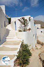 GriechenlandWeb.de Tholaria Amorgos - Insel Amorgos - Kykladen Griechenland foto 283 - Foto GriechenlandWeb.de