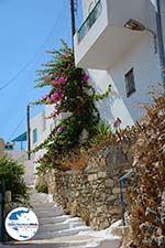 GriechenlandWeb.de Tholaria Amorgos - Insel Amorgos - Kykladen Griechenland foto 285 - Foto GriechenlandWeb.de