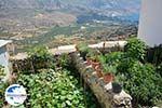 GriechenlandWeb.de Tholaria Amorgos - Insel Amorgos - Kykladen Griechenland foto 287 - Foto GriechenlandWeb.de