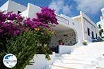 GriechenlandWeb.de Tholaria Amorgos - Insel Amorgos - Kykladen Griechenland foto 289 - Foto GriechenlandWeb.de