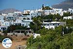 GriechenlandWeb.de Langada Amorgos - Insel Amorgos - Kykladen foto 342 - Foto GriechenlandWeb.de